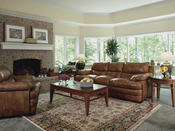 Flexsteel Dylan Leather Reclining Living Room Collection-5066