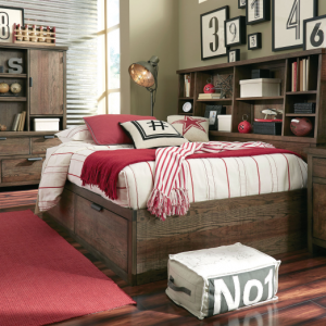 Legacy Furniture Fulton County Youth Bedroom with Bookcase Lounge Bed